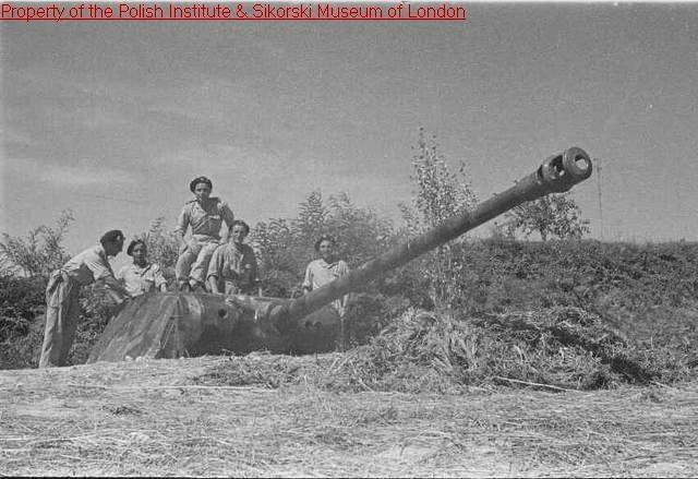 La tactique des tanks enterrés de l'Armée Rouge - Page 2 Panthe10