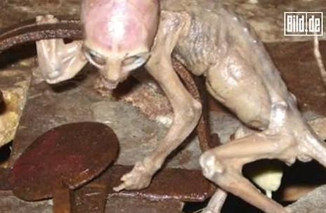 Meksički farmer pronašao bebu vanzemaljca? Captur49