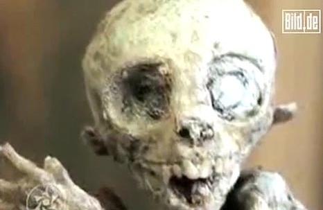 Meksički farmer pronašao bebu vanzemaljca? Captur50