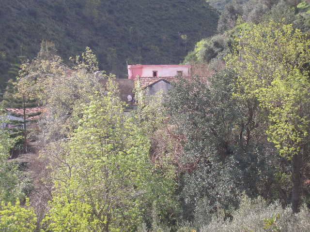Aokas et ses villages P1010050