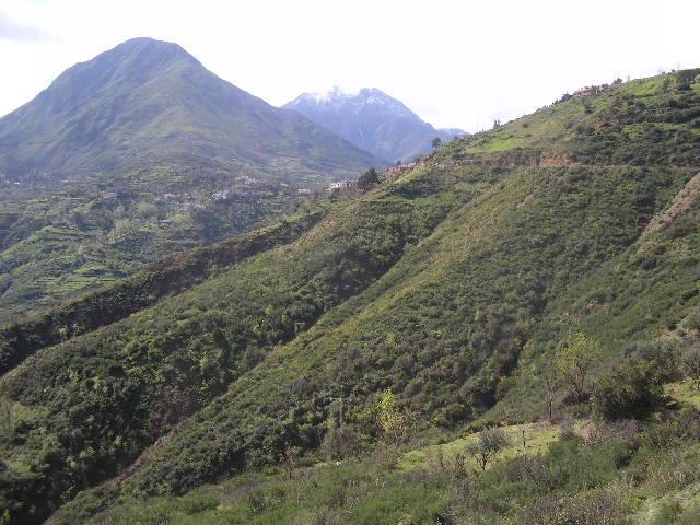 Aokas et ses villages P1010111