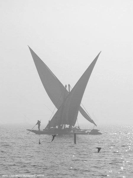 مجموعة صور لبورسعيد الباسله جوهرة مصر 1 N6810111