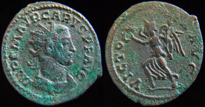 carus - Tacite, Florien, Carus, Numérien, Carin Carus11
