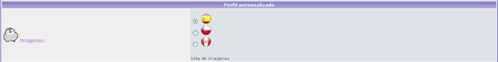 Campos del perfil Campos22