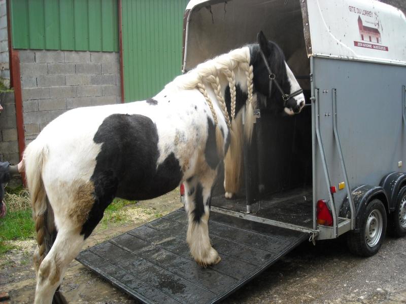 Méthode pour monter un cheval réticent dans le van - Page 3 Dscn0012