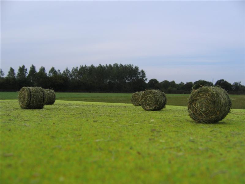 ETA des Travaux Agricoles de l'Erdre [Semis de maïs 2010!!!] Recolt16