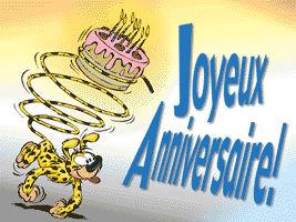 Joyeux anniversaire Ptiroutier!!!! Sitdri11