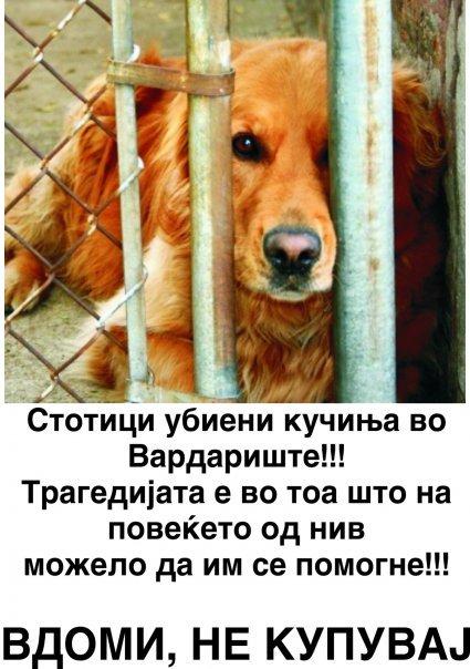 ФОРУМ ТОРМОЗЕЊЕ - Тормозење 16738_10