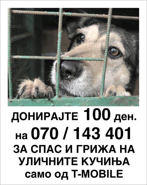 Стационар ВАРДАРИШТЕ 16738_11