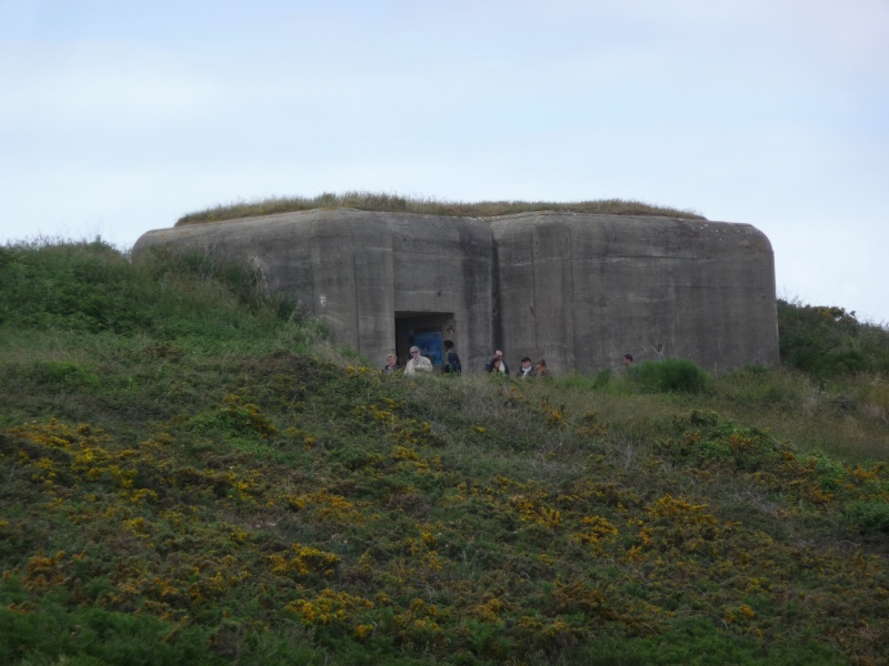 Pointe du Grouin P1220810