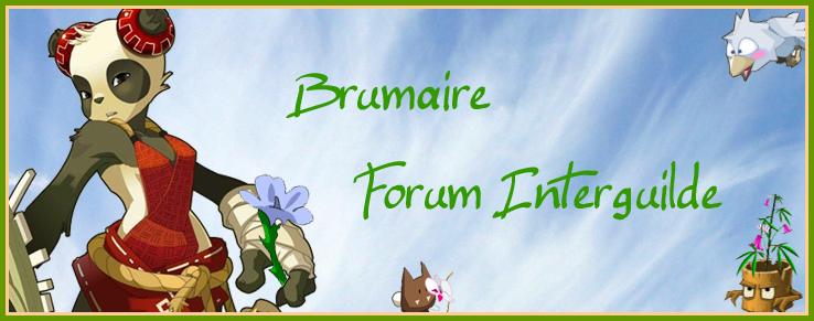Bouge Ton Brumaire - Forum INTERGUILDES