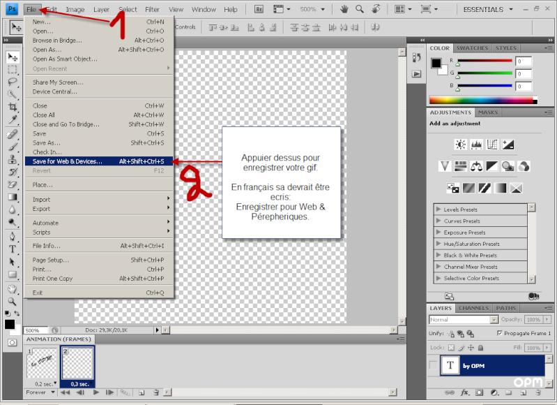 Faire des gifs avec Photoshop 28_1210