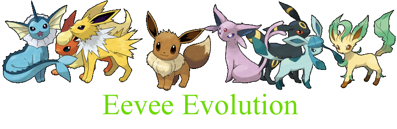 Eevee Evolution Club