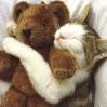 Qui veut tricoter pour les Minous Animau10