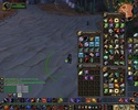 PVP Warrior & paladin vs paladin x2 Wowscr18