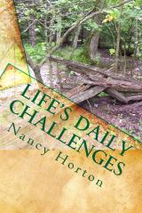 Life's Daily Challenges Thumbn10