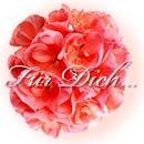 Liebe Grüsse an Bianca Far_di10