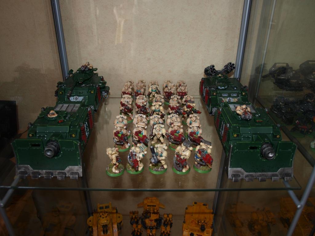 Galerie d'Imperial Fist P8260026