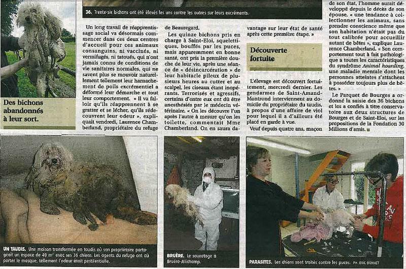 36 bichons retirés de leur enfer - Page 2 210