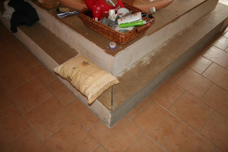 La Salle de bain - EDIT Projet mis entre-parenthèse pour l'instant .. sniff Img_5511