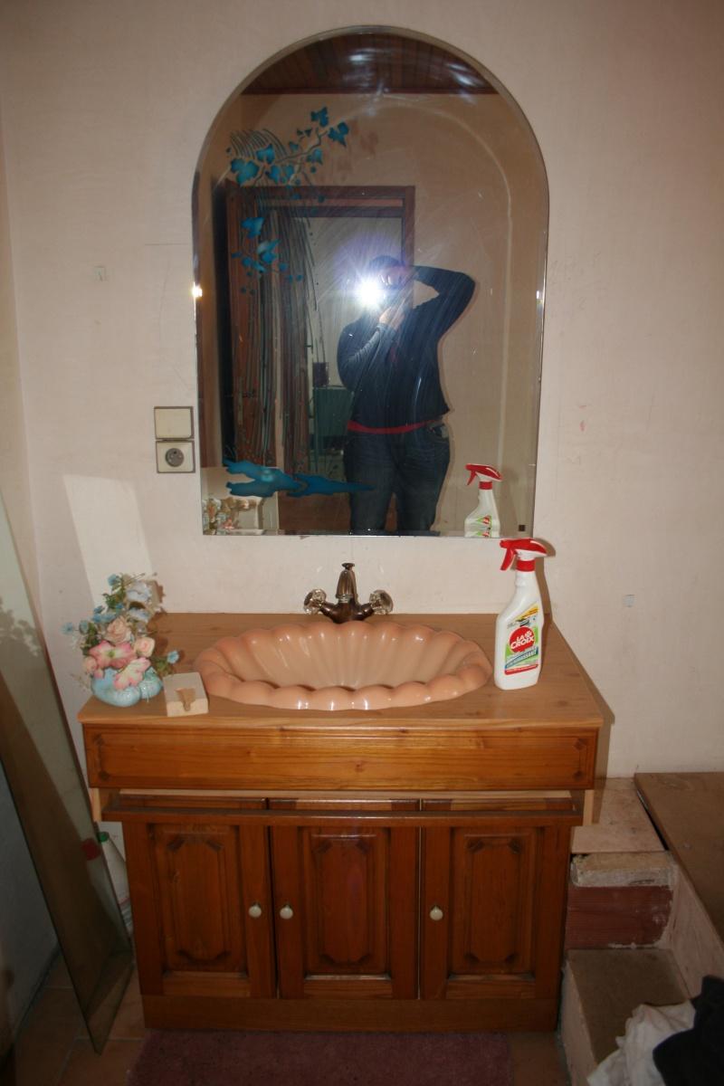 La Salle de bain - EDIT Projet mis entre-parenthèse pour l'instant .. sniff Img_5514