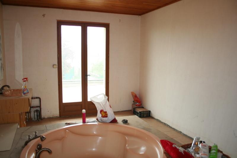 La Salle de bain - EDIT Projet mis entre-parenthèse pour l'instant .. sniff Img_5515