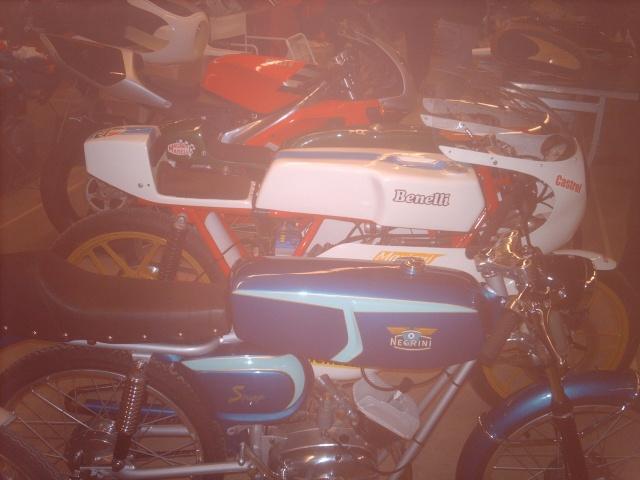 SALON DE VINCENNES 2009 Imag5025