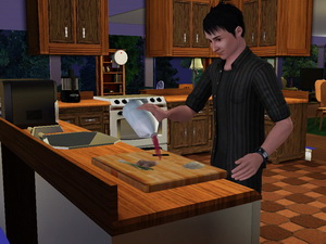 LET THERE BE SIMS Naoto110