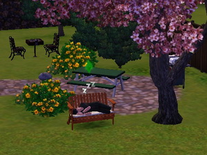 LET THERE BE SIMS Naoto310