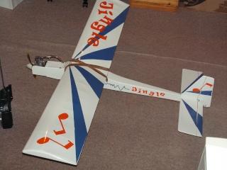 Notre premier avion àmoteur à explosion Pict0077