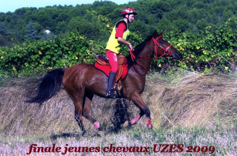 finales jeunes chevaux 2009 à Uzès Img05111