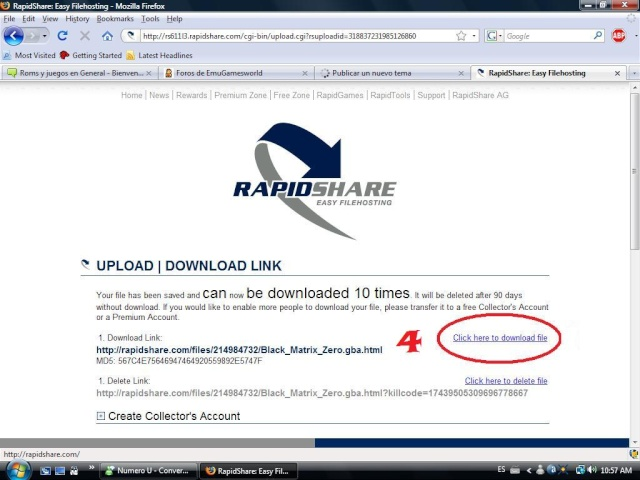 [TUTORIAL] Subir archivos desde Rapidshare Rapids17