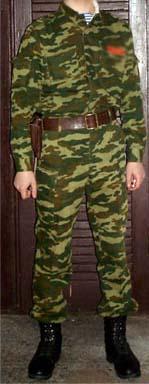 Belarussian camouflage 10178610