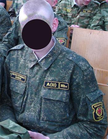 Belarussian camouflage Dig10
