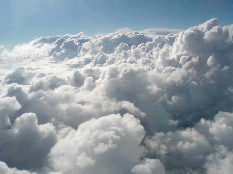 La tête dans les nuages P7040410