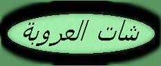 شات العروبة