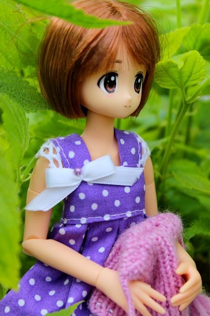 [famille anime dolls] L'arrivé de Kitty (MDD)  Img_0211