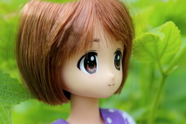 [famille anime dolls] L'arrivé de Kitty (MDD)  Img_0212