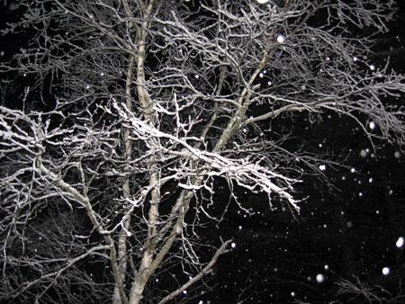 Красивые фотографии Snow-n10