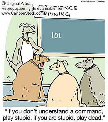 Dog Cartoons Dogcom10