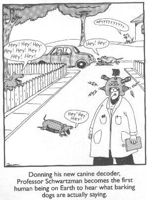 Dog Cartoons Farsid10