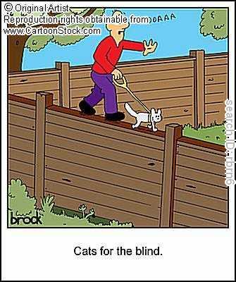 Dog Cartoons Rbrn6l10