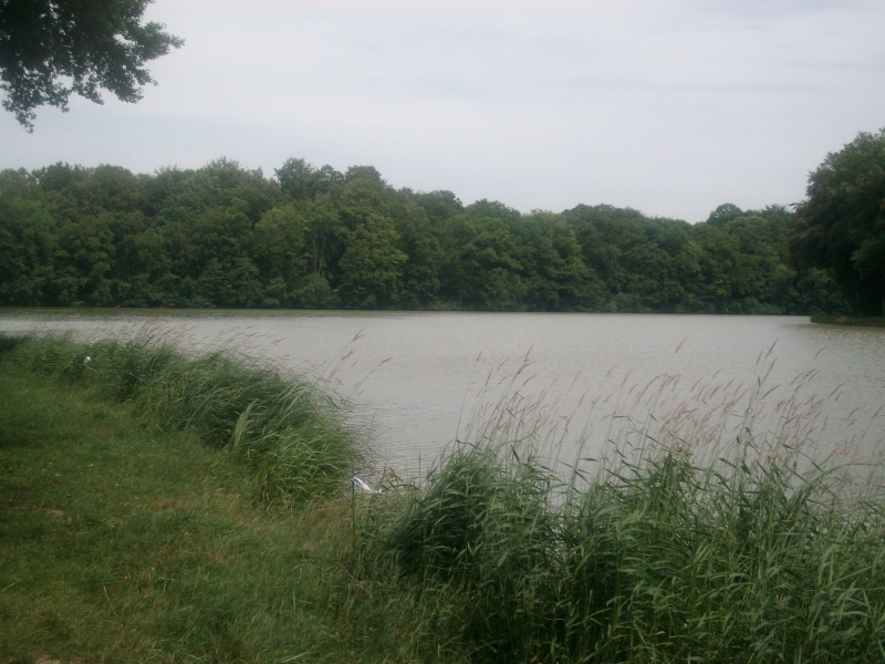 étang du fourchu Alim1012