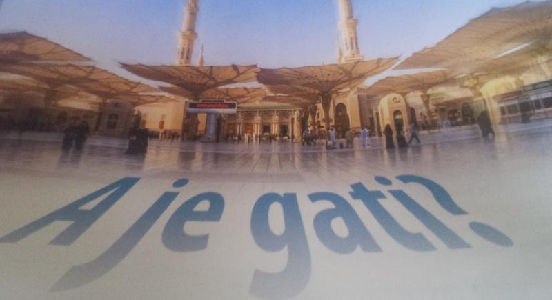 A je Gatiiii???!!! 20130410