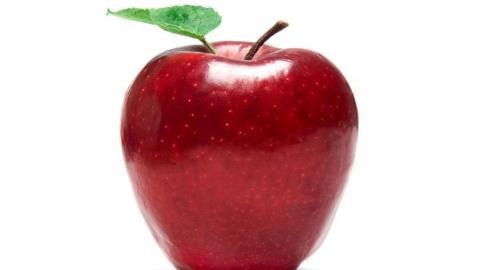 Dy gjysmat e një molle: Hz. Fatimeja dhe Hz. Aliu U59umo10