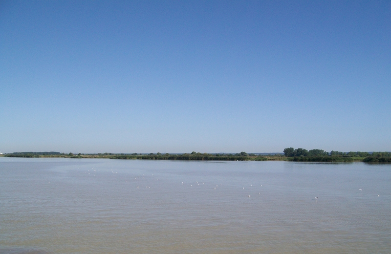 Nous partîmes 500... Croisière sur la Loire 0910