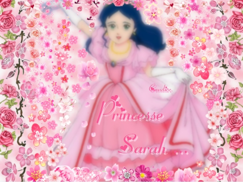 Montages Princesse Sarah 11011811