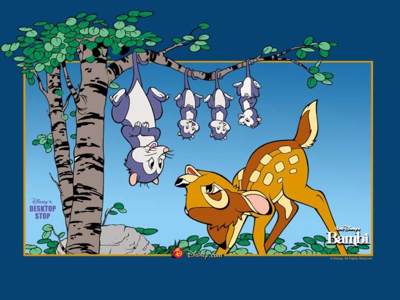 Fonds d'écrans Bambi 1021