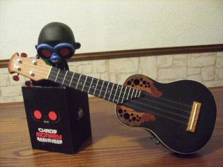 photo  en vrac du ukulele Hpim0613