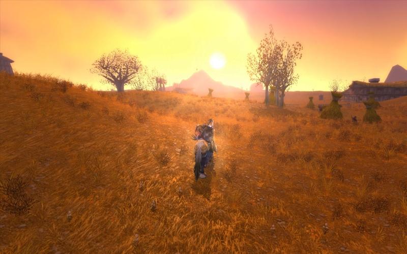 Soleil déclinant sur les collines de la Marche de l'Ouest.. Mzrche10